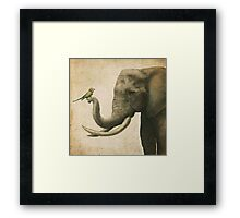 A New Friend (colour option) Framed Print