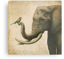 A New Friend (colour option) Metal Print