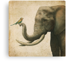 A New Friend (colour option) Canvas Print