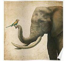 A New Friend (colour option) Poster