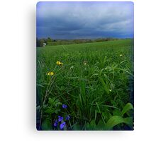 Springtime Storm on Green Meadow Canvas Print