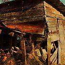 Broken Barn by Ginger  Barritt