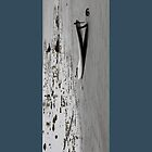 Lonley Surfboard by cthomas888