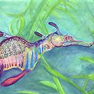 Weedy Sea Dragon by FrostClayton