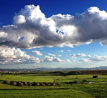 Algerian Landscape by Omar Dakhane