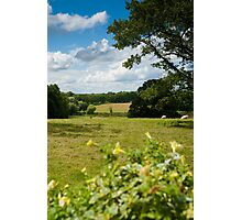 English Country Landscape Photographic Print