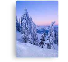 Evening Snowscape Canvas Print