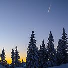 Alpine Evening Snowscape by mlphoto
