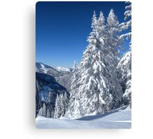 Alpine Mountain Snowscape Canvas Print