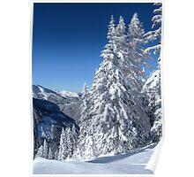 Alpine Mountain Snowscape Poster