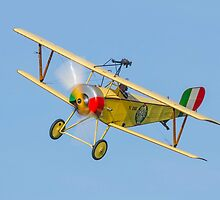 Nieuport 11 replica by Barry Culling