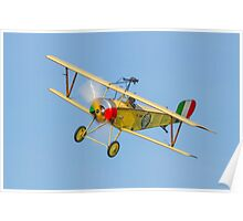 Nieuport 11 replica Poster