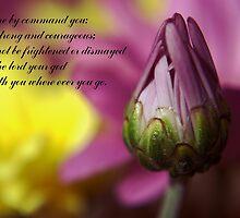 Joshua 1:9 take 2 by tonysphotospot
