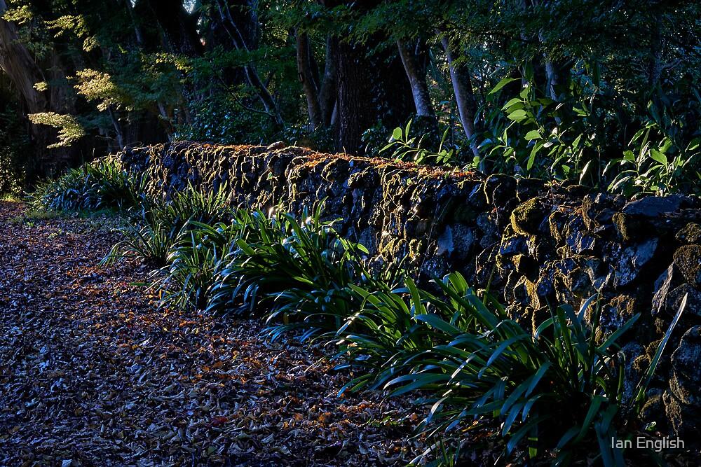 Mt Wilson Wall - Sefton Hall by Ian English