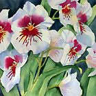 Miltonia Orchid by Ann Mortimer