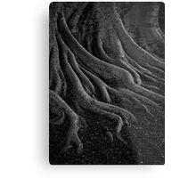 entrenched Metal Print