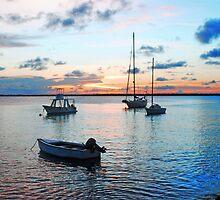 Ocean Sunset by emilyduwan