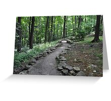 The Path Into the Forest Greeting Card