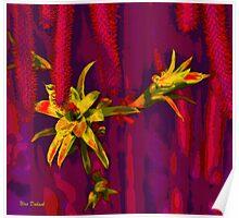 On Thorns on Flowers ... על קוצים.... ועל פרחים Poster