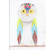 Bemused Jeweled Owl Photographic Print