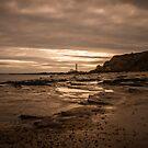 Shoreline by Georden