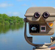 Landscape Viewer by rosaliemcm