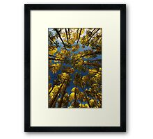 To Lie Under the Aspens in Fall Framed Print