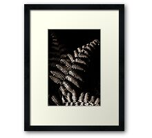 A Study in Harvesting Light Framed Print