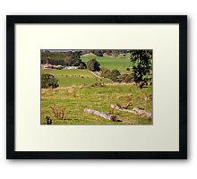 Rural Scene, Tasmania, Australia Framed Print