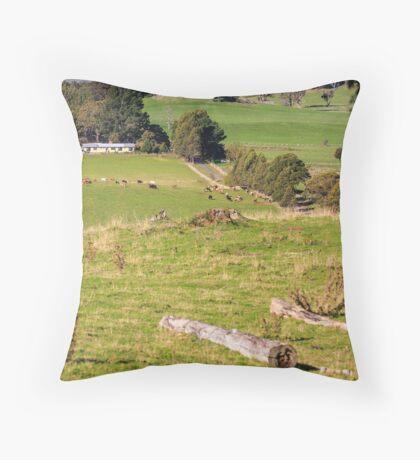 Rural Scene, Tasmania, Australia Throw Pillow