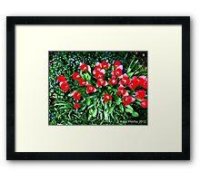 Spring Flowers, Mainline, PA Framed Print