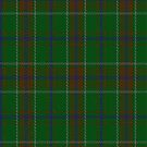 02300 Loden Daks Unknown Tartan Fabric Print Iphone Case by Detnecs2013