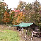 Log Cabin  Fall Colors by G. Cobble