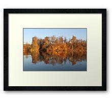 Green Brier Lake (kaleidoscope) Framed Print