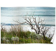 Ocean swell beyond the foreshore Poster