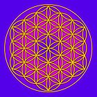 Flower of Life Mandala by haymelter