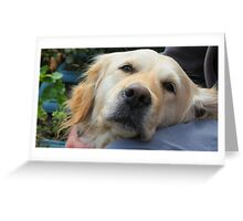 Loving Companion Greeting Card