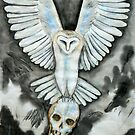 White bone collector owl by skinandbones