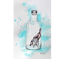 Bottled Squirrel Photographic Print