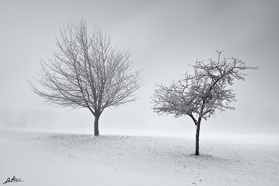 Two to Tango by redtree