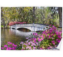 The Bridge At Magnolia Plantation Poster