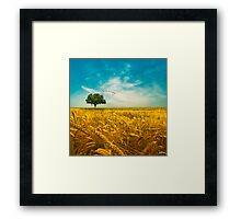 Lovely Day Framed Print