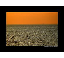 Seagulls Flying Above Long Island Sound - Stony Brook, New York  Photographic Print