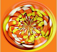 """Candy Corn"" Photographic Print"