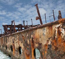 Left to Rust by Linda Lees