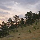 Boulder Colorado Flatirons Hill by Nina Brandin