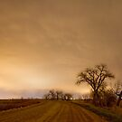 Country Dirt Road Into The Storm by Bo Insogna