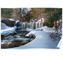 Winter Afternoon At Oneida Falls Poster