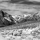 Owens River Road Panorama by Dory Breaux