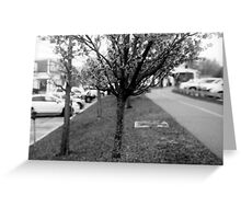 Talking Tree Greeting Card